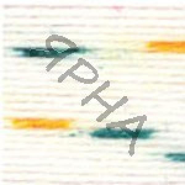 Yarn Baby color YarnArt (РАМ) #   5133 [меланж]