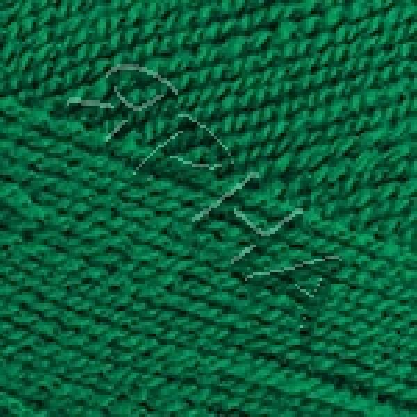 Yarn Gold RAM YarnArt (РАМ) #   9049 [изумруд]