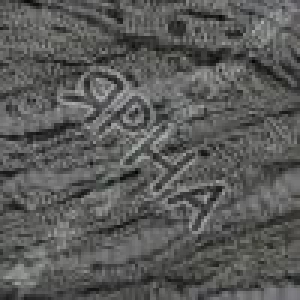 Дантела 87 серый Alize (Ализе)