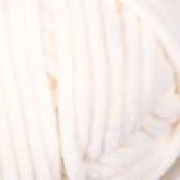 Yarn Dolce YarnArt (РАМ) #    745 [молоко]
