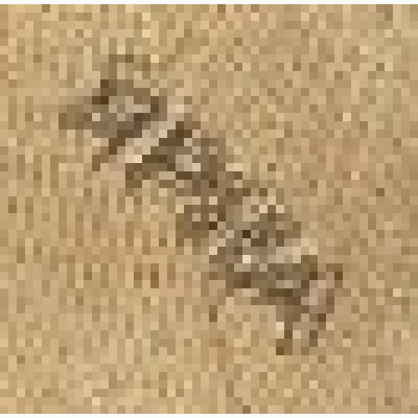 Пряжа Замбак Картопу #    853 [кемел]