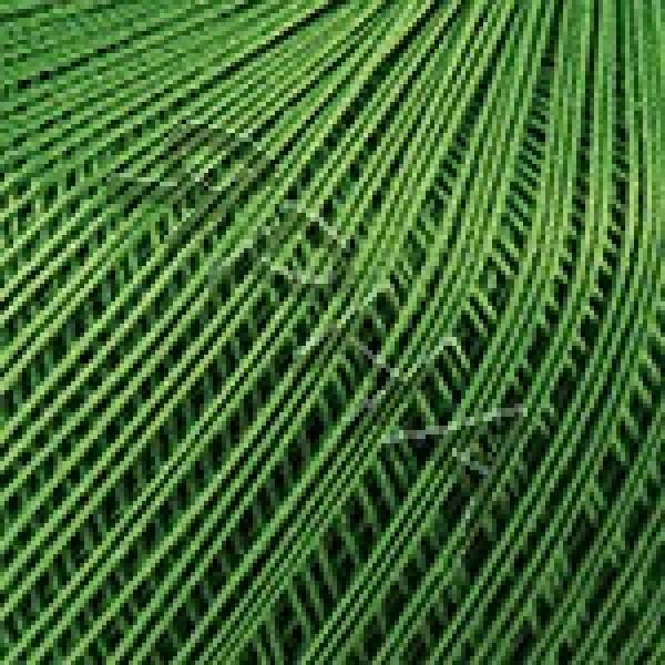 Yarn Lily YarnArt (РАМ) #   6332 [трава]