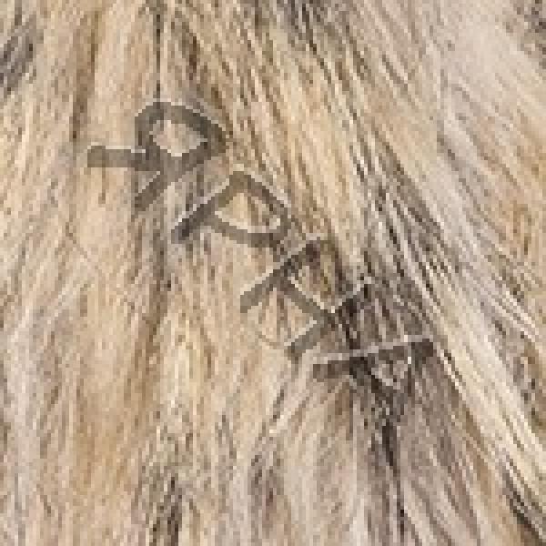 Yarn Fur-collar \ tuxede \ YarnArt (РАМ) #    304 [енот]