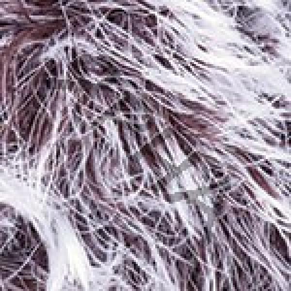Yarn Rabbit RAM YarnArt (РАМ) #    560 [шокол-белый]