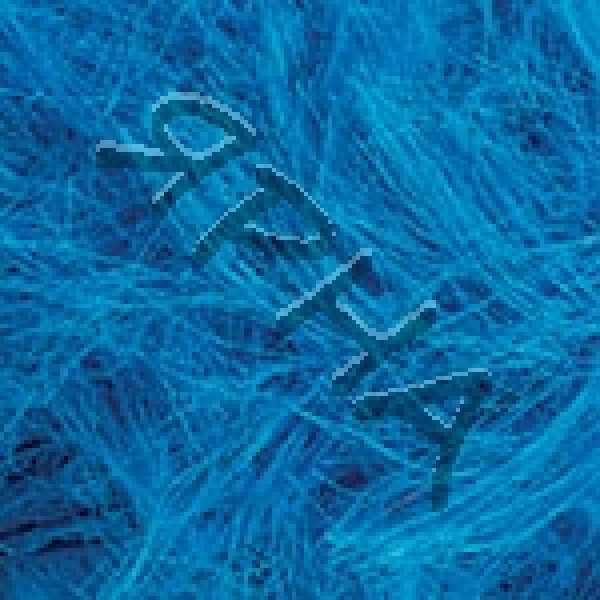 Пряжа в мотках Танго YarnArt (РАМ) #    533 [голубой]