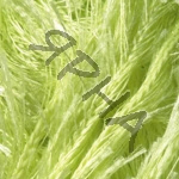 Yarn Samba YarnArt (РАМ) #   2036 [салат]