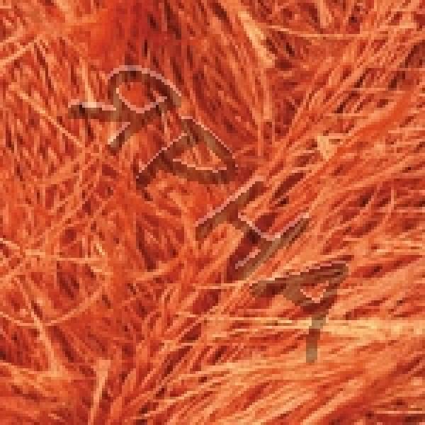 Yarn Samba YarnArt (РАМ) #   2024 [Красный]