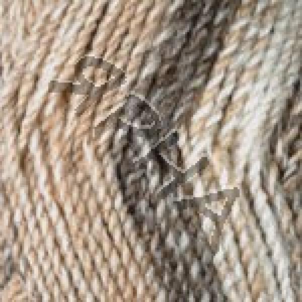 Yarn Everest YarnArt (РАМ) #   7024 [беж-черный]